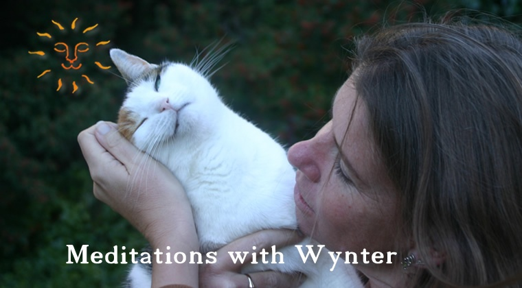 Meditations with Wynter