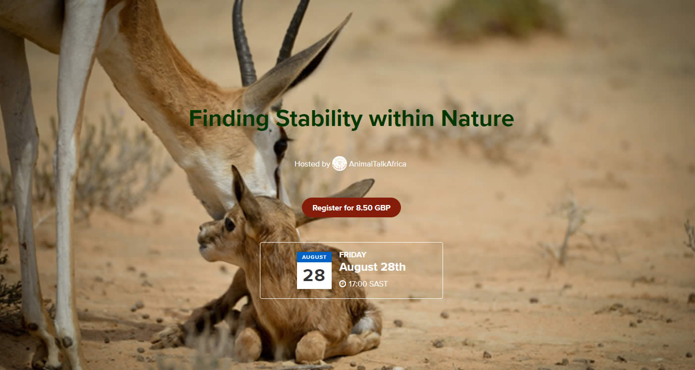 Webinar – Finding Stability within Nature