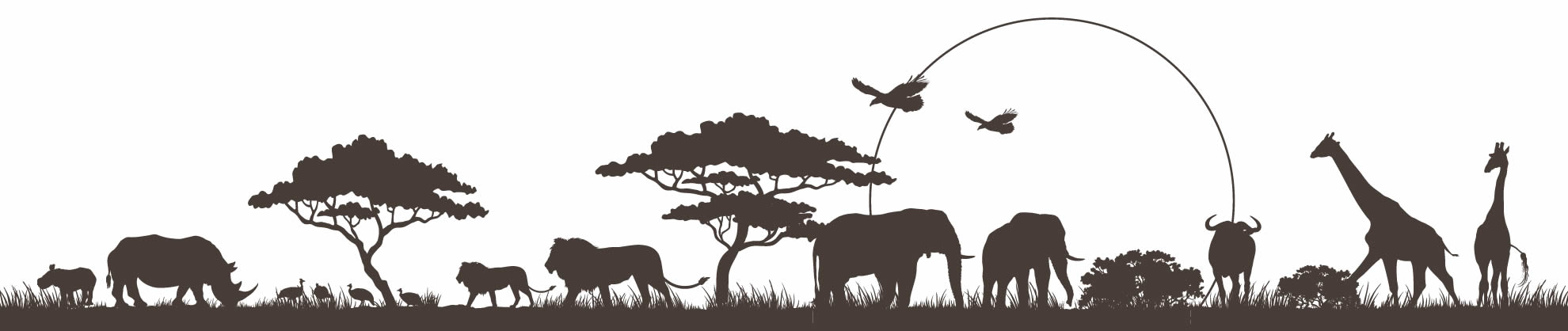 Animaltalk Africa - learn how to talk to animals and all species with Wynter Worsthorne