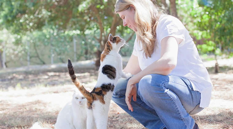 Animal communication Introduction course