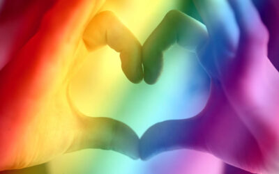 Webinar – The Rainbow Bridge