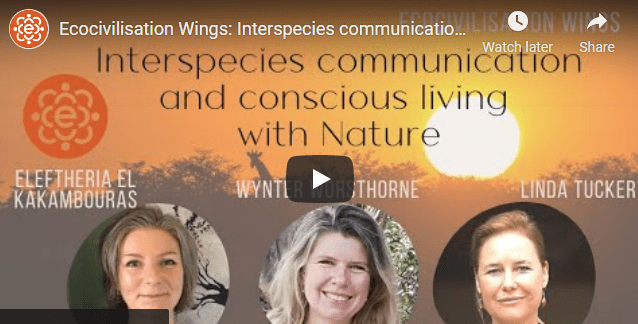 FREE Webinar: Interspecies communication and conscious living with Nature